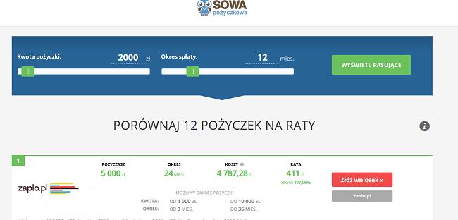 sowapozyczkowa.pl opinie
